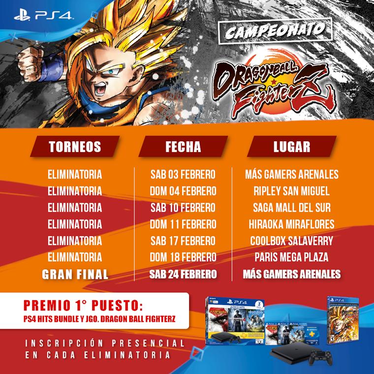 fechas torneo